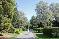 Hamburg Ohlsdorf Friedhof