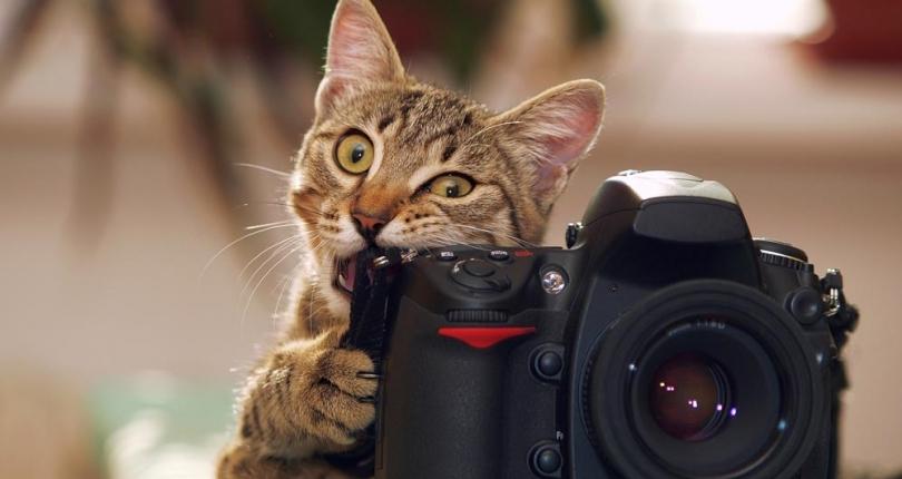 Machen Sie perfekte Fotos von Ihrem Haus